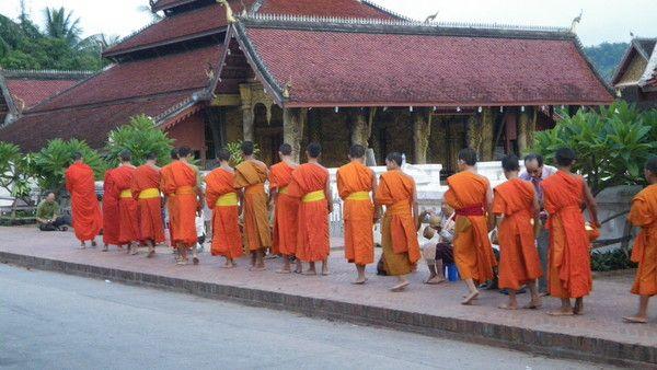 Laos for Miroi log in